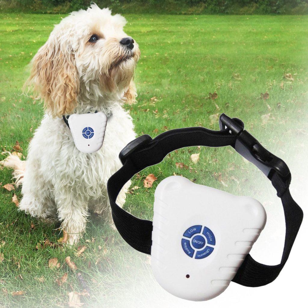 Billigt anti-gø halsbånd til hunde
